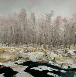 Stream and Woods in Winter, 2020