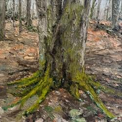 Tree and Moss in Early Spring, 2020