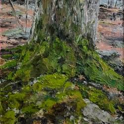 Old Tree and Moss (Early Spring), 2020