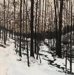 Woods in Winter, 2018
