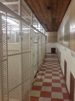 Possumplace Kennels