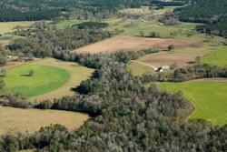 Oblique aerial photo of Nursey Lands