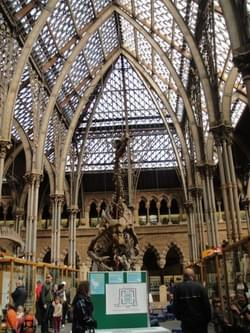 Natural History Museum, Oxford