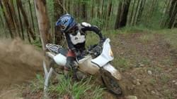 dr650 roosting some ''enduro'' bikes that couldnt make it up the hill