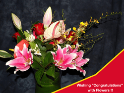 Wishing Congratulation with Flowers