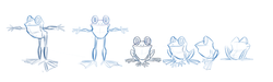 Turn around for final frog design from commercial project