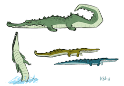 Random design ideas of the croc  for commercial project