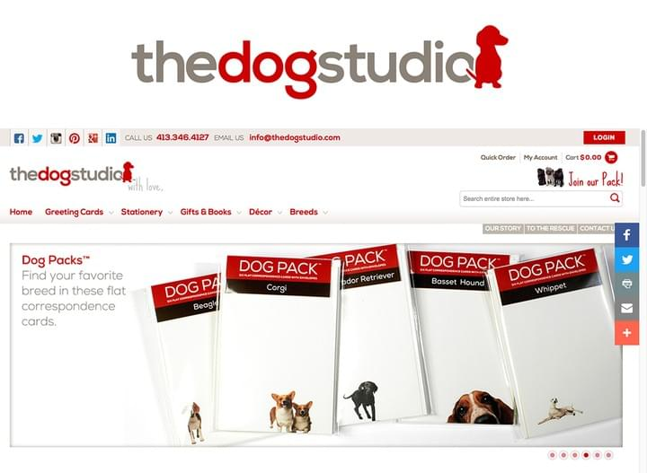 The Dog Studio