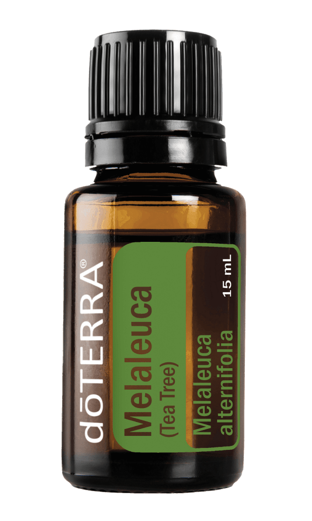 Melaleuca - doTERRA Essential Oil online shop