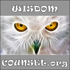 Wisdom Counsel, StartOver.xyz, Possibility Management