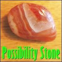 Become A Seed, Possibility Stone, startover.xyz, Possibility Management