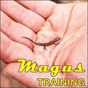 Magus Training, StartOver.xyz, Possibility Management