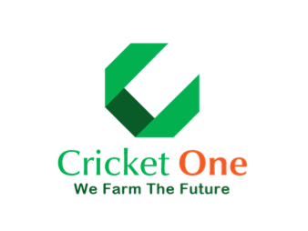 Sustainable Protein Cricket Superfood Vietnam