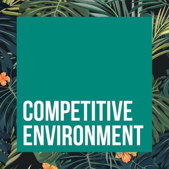 Competitive Environment  - PR Incentives