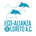 Eco Alianza de Loreto Website