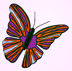 Butterfly -purple & orange