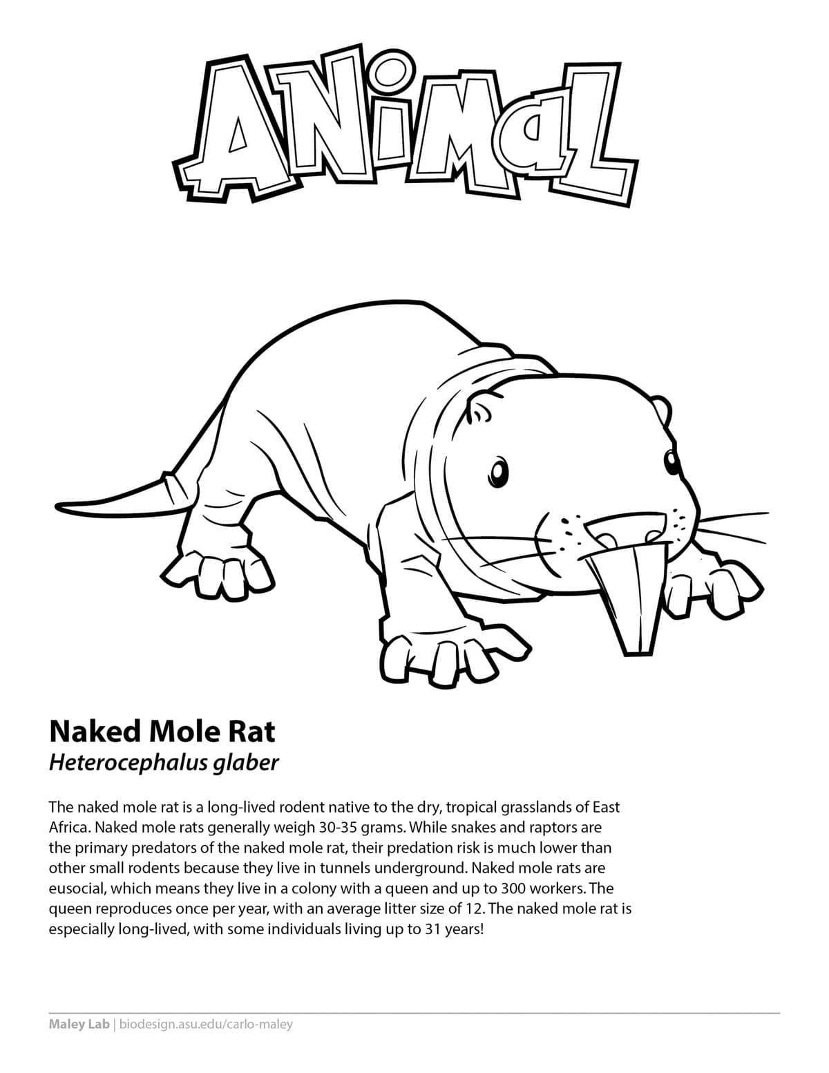 Lab Rats Coloring Page - 8 Things About Lab Rats Coloring ...