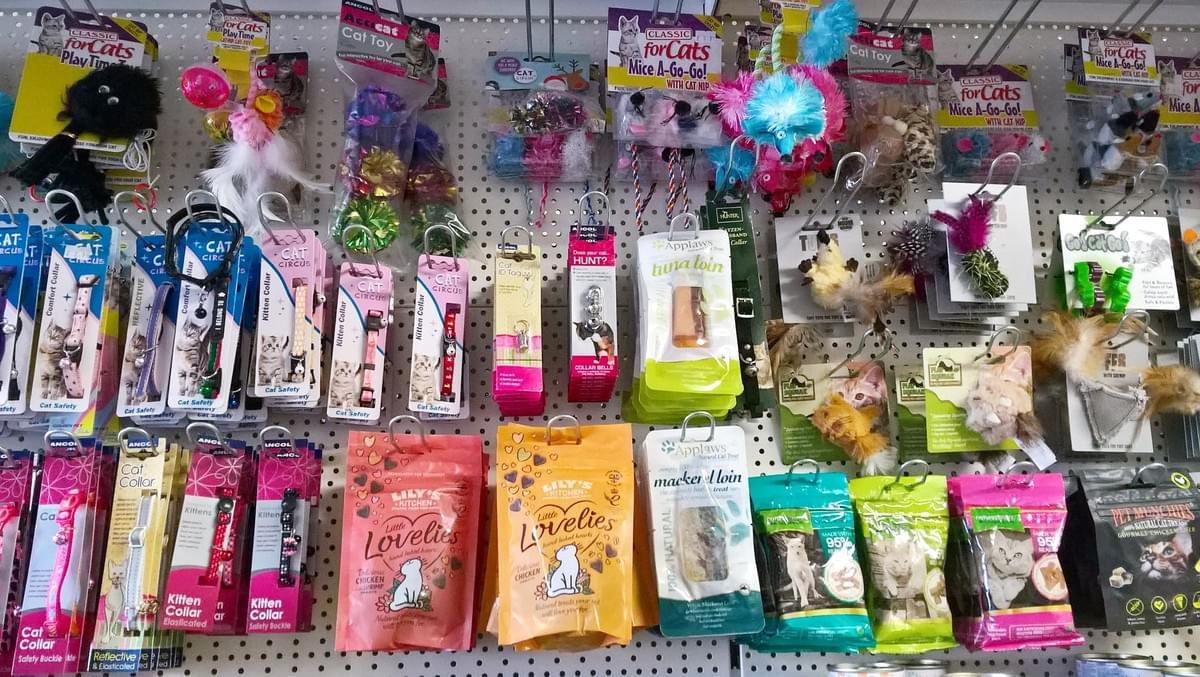 cat treats and accessories