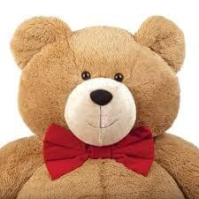 Teddy For Gifts