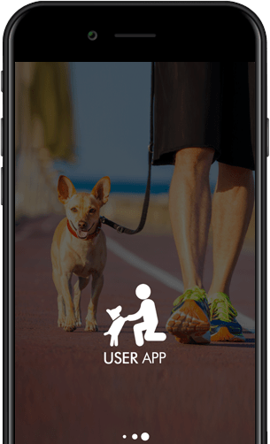 On demand dog walking app