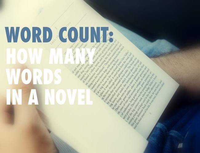 Concise language word essay word count
