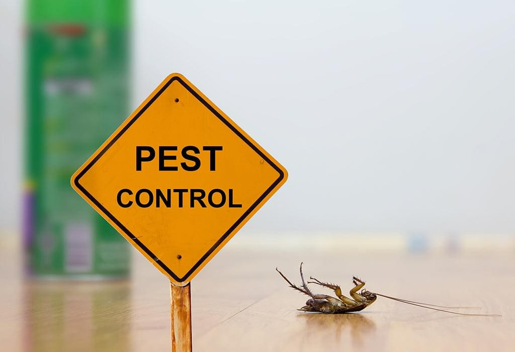 Uber for pest control