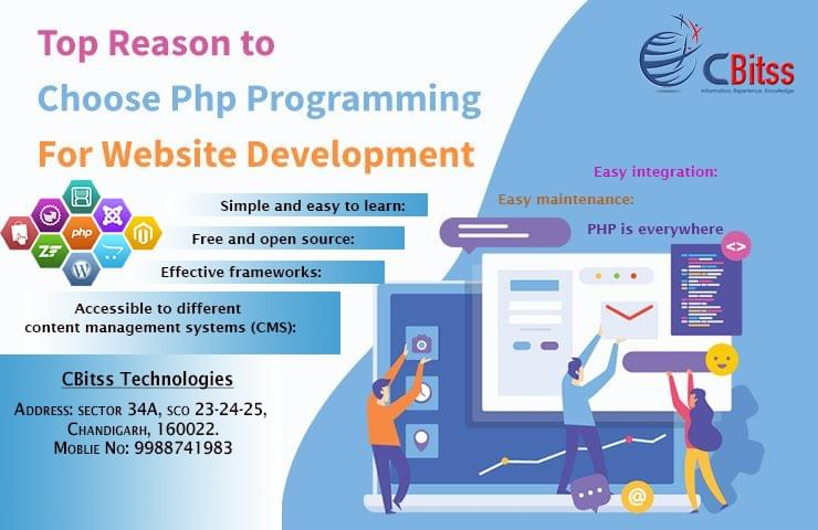 choose the PHP programming language to develop websites