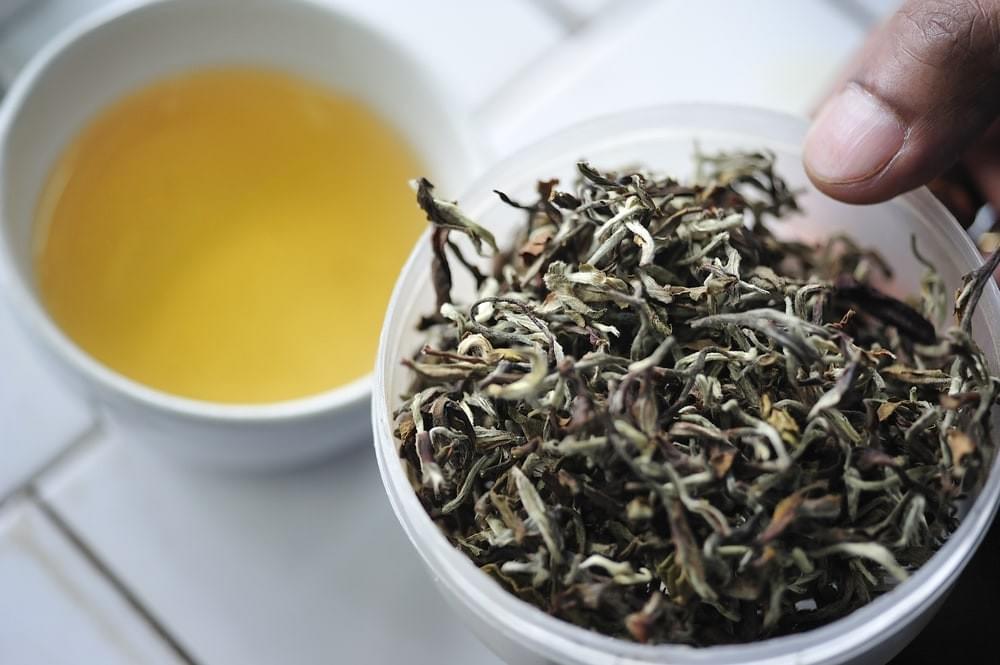 Differences Between Assam Tea & Darjeeling Tea - assam tea