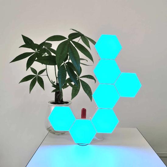 programmed hexagonal lihgts