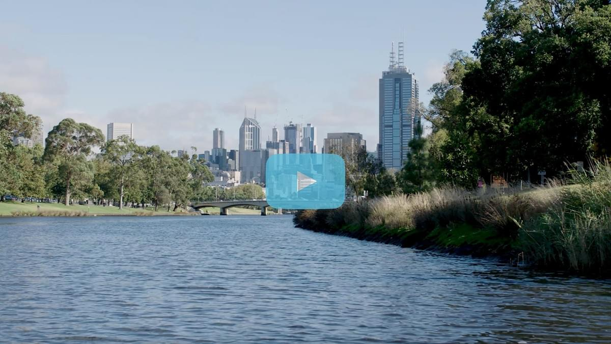 Momentary, video production, storytelling, melbourne, social impact, social enterprise