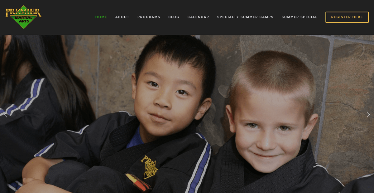 Custom Sales Website for Martial Arts School
