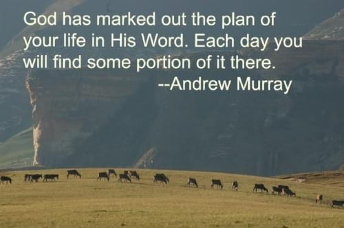 God has marked out the plan of your life in His Word. Each day you will find some portion of it there.