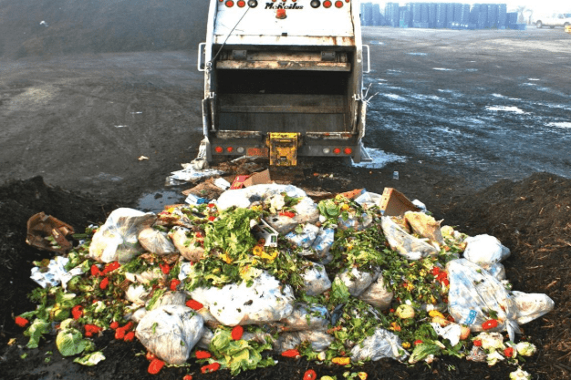 In New Zealand alone, we throw out 122,547 tonnes of fully edible food per year
