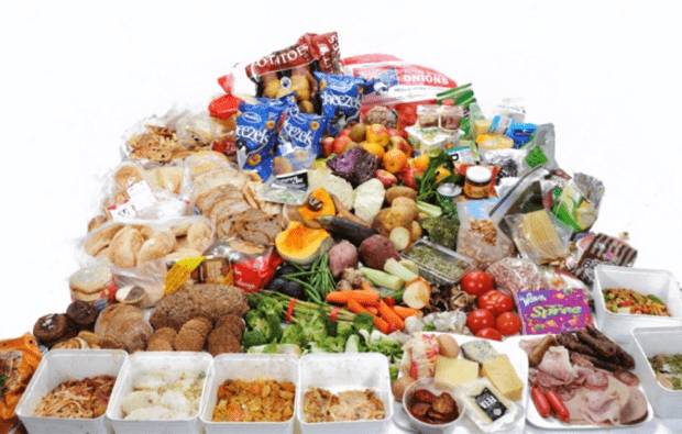Actual food taken from household waste audits conducted for LFHW campaign – average 6 months food from one family. 40 kilos worth of edible food waste.