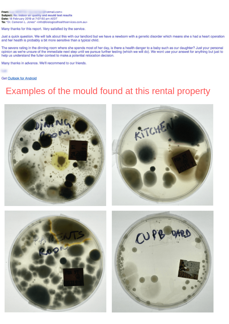 Testimonial Screenshot #5 of Email received by mould.net.au from a client who used one of our test kits to measure for mould and spore contamination in her car