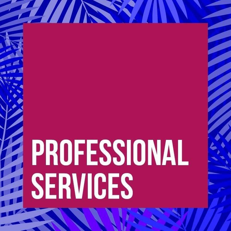 PROFESSIONAL SERVICES: Legal Services, Tax Planning and Accounting Services