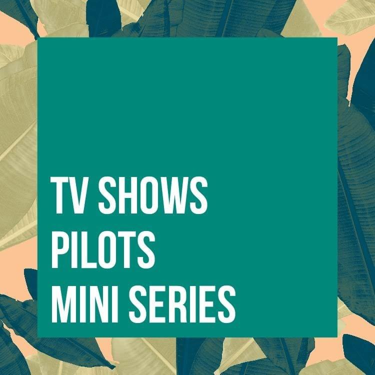 Television Programs, Pilots, Mini-Series, and Series in Episodes
