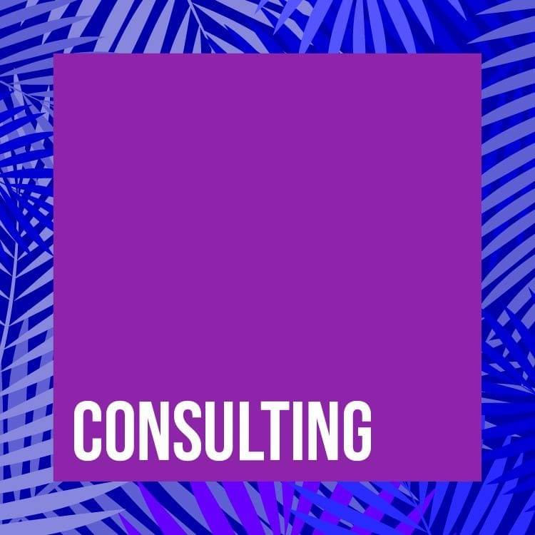 CONSULTING: Economic, Scientific, Environmental, Technological, Managerial, Marketing, Human Resources, Computer, Auditing and Other Consulting Services