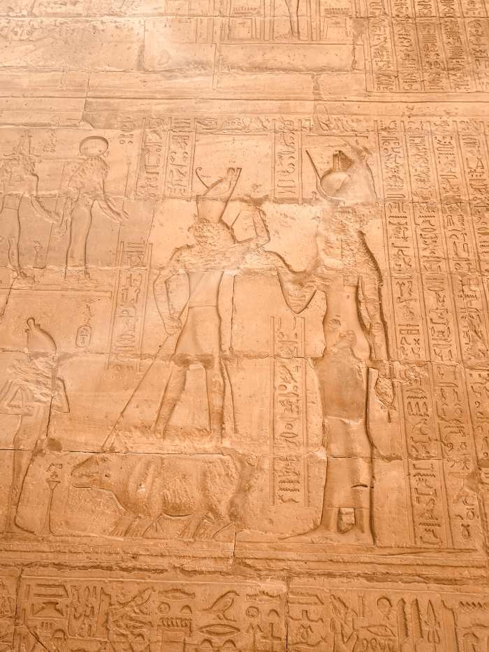 Hieroglyphics at Edfu Temple of Horus in Aswan, Egypt