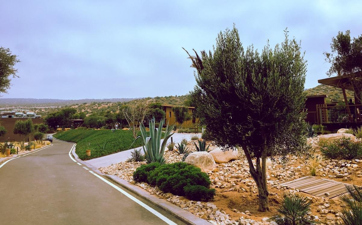 Sol House Taghazout Bay road through grass and desert landscape with bungalows in the distance hotel agadir