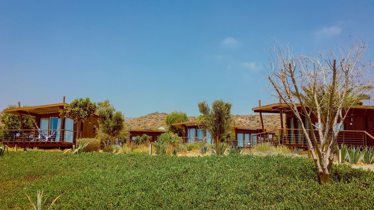 Sol House Taghazout Bay bungalows with windows looking at the grass and trees at Sol House Taghazout bay