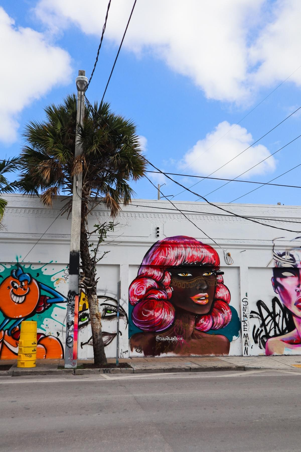 Wynwood Walls street art of black woman with pink curly hair and electricity poles
