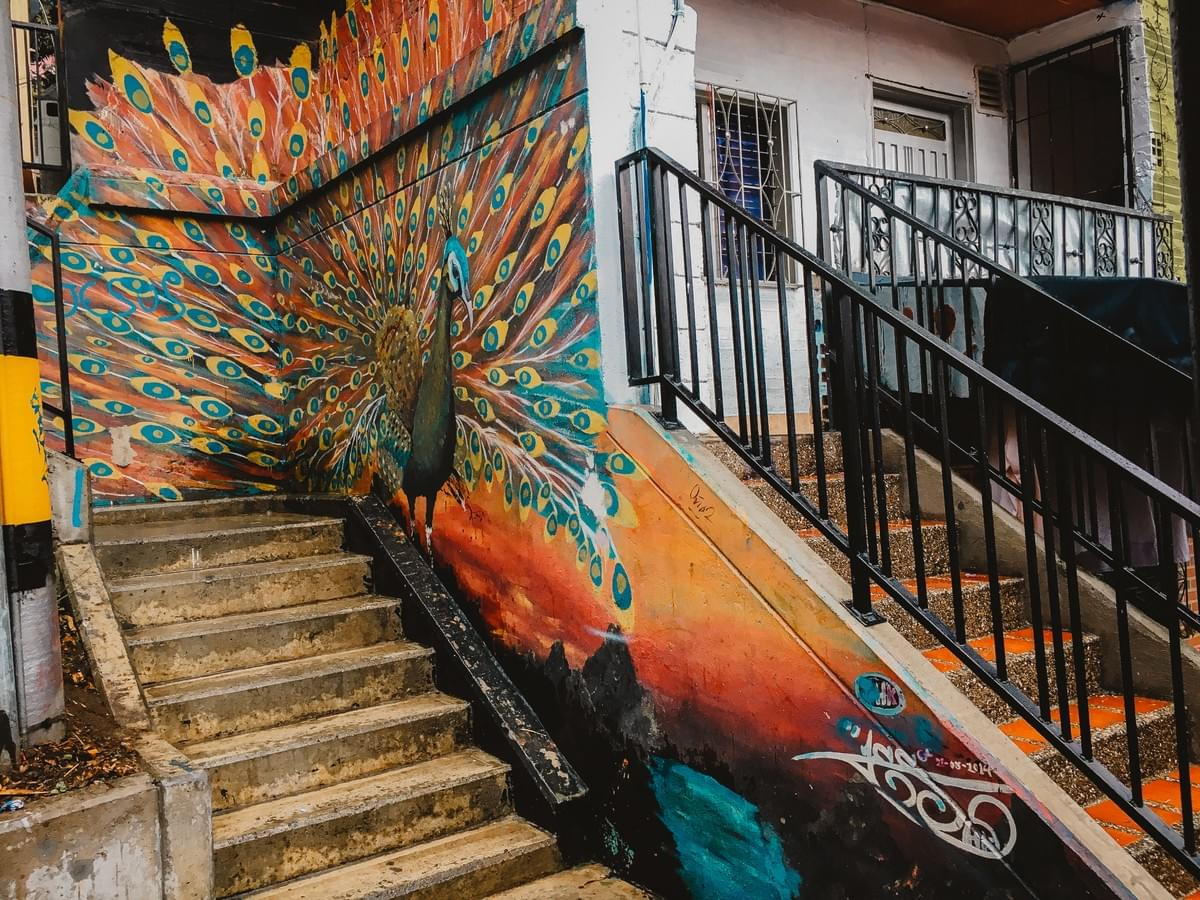 Colorful street art Peacock along stairs in comuna 13 Commune 13 San Javier