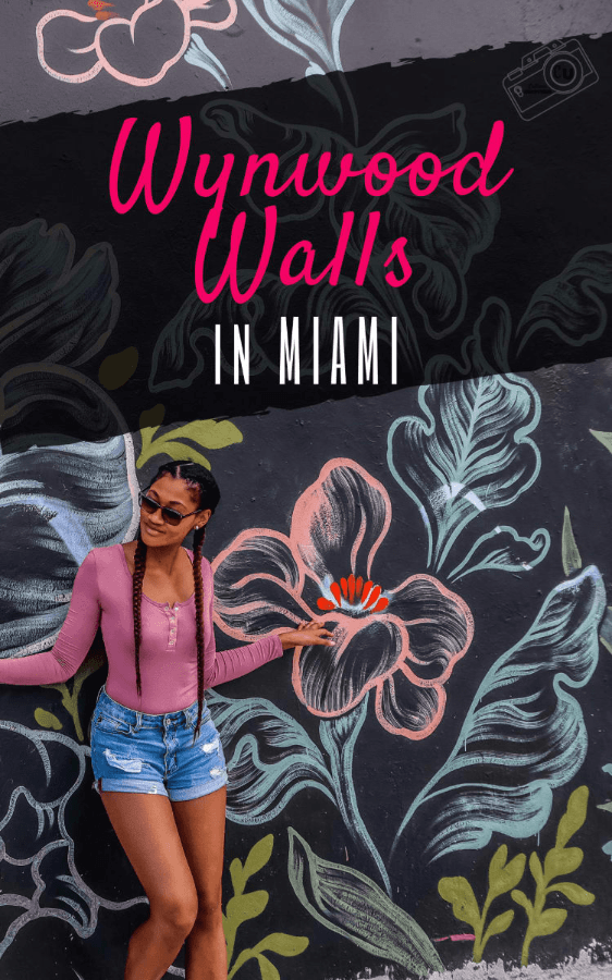 black girl with french braids leaning on a wall with chalk street art flowers at wynwood walls in miami