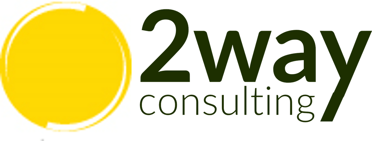 2Way Consulting, votre Boussole à l'Ere Post-Révolution Digitale