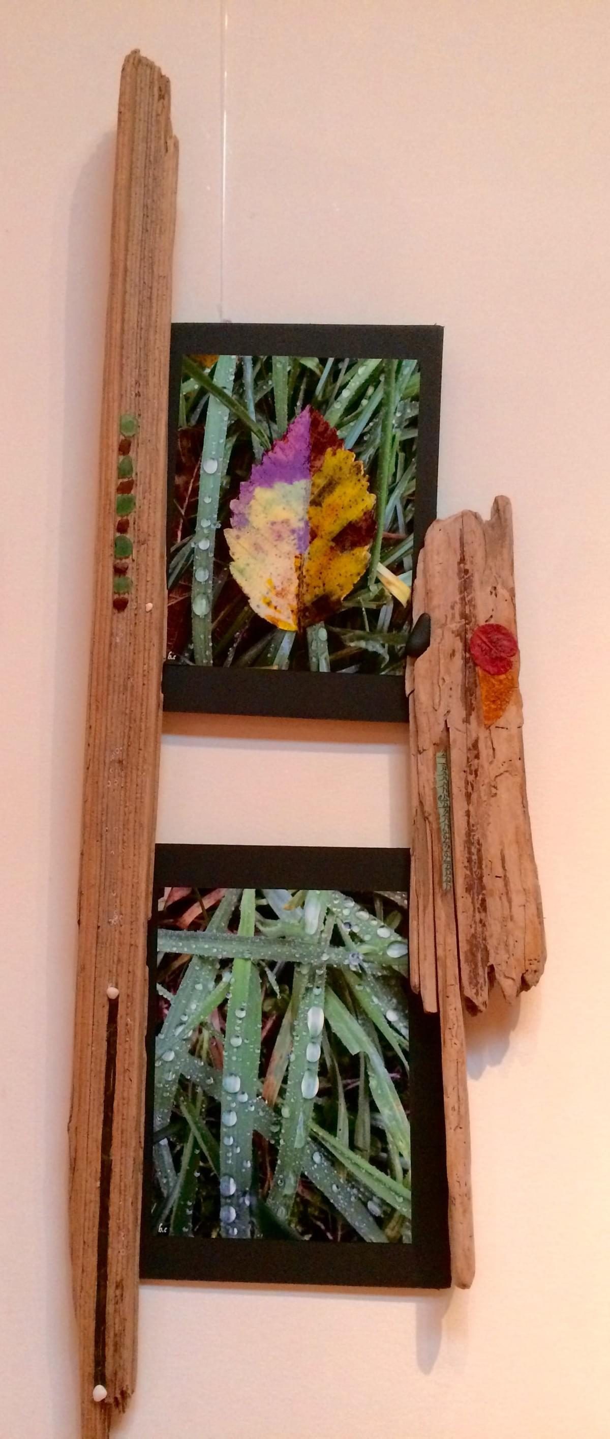 These photos were taken during my early morning walkabout in the Kitsilano neighborhood of Vancouver, spring of 2016. The wood pieces, beach glass, seaweed and shells were harvested from a beach in the Saanich area of the Salish Sea.  The prayer flags were found floating on the wind at the Buddhist retreat center on Mount Tuam, Salt Spring Island.