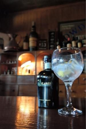 Premium Irish Gin
