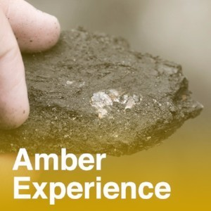 Amber Experience
