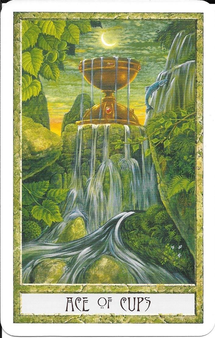 The Tarot of Eli: The Druid Craft Tarot- Ace of Cups & The