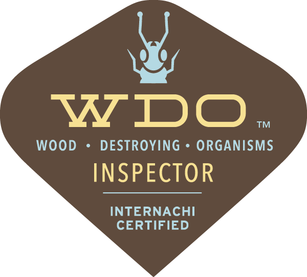 Pest Inspections, Pest Inspector, Wood Destroying Pest Inspection Report